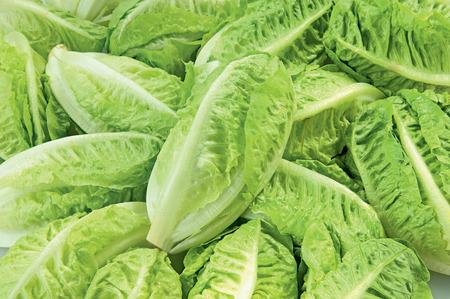 Green Salad isolated fresh vegetable healthy raw food Stock Photo