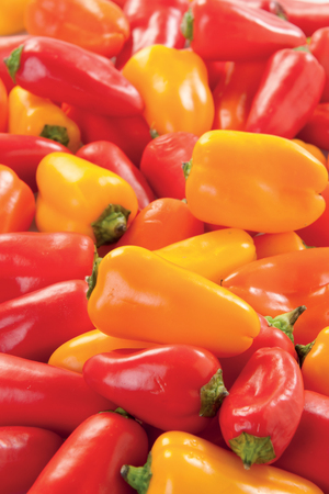 Colorful peppers on white backgroud isolated fresh vegetable