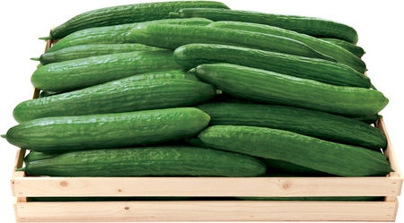 Green cucumbers in a box vegetables food Stock Photo
