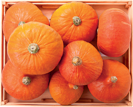 cucurbit: Pumpkin Hokaido autumn sweet vegetable raw food background