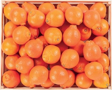 Juicy Orange sweet fruit heatlthy raw food
