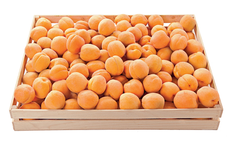 Apricots in a box sweet fruit raw food