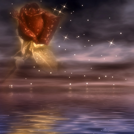 Postal romantic sea flower night and ocean