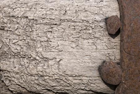 oxidized: apolillada antiguo fondo de madera y hierro oxidado