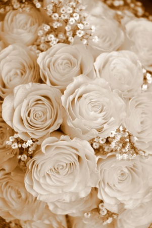 background bouquet sepia tone Stock Photo - 9171477
