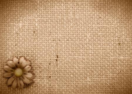 sepia background burlap and Daisy  免版税图像