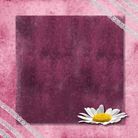 album greetings: pink background with a daisy and old lace