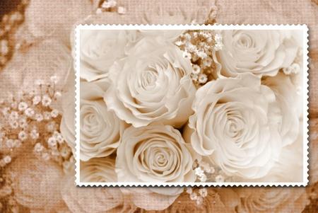 Romantico mazzolino di composizione di old fashioned Rose  Archivio Fotografico - 9324978