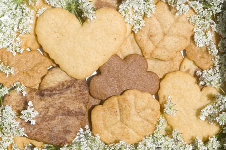 artisan bakery: Christmas butter cookies decorated with wild flowers