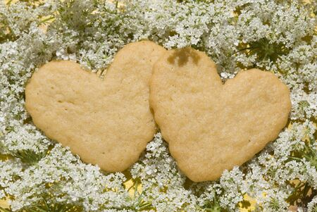 shortbread delicious heart-shaped flowers on photo