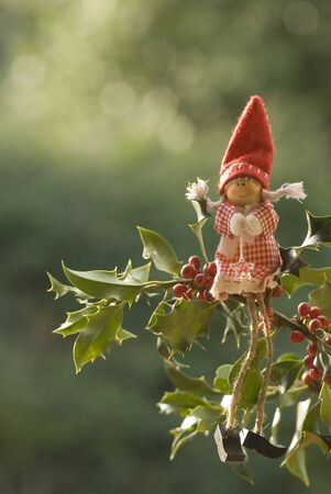 Christmas elf doll sitting on a branch of holly photo