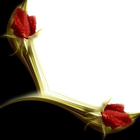 Carta bianca con rose rosse in un angolo Archivio Fotografico - 12379808