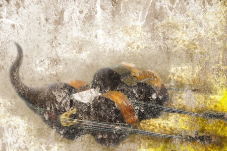abstract grunge background old bass on the floor photo