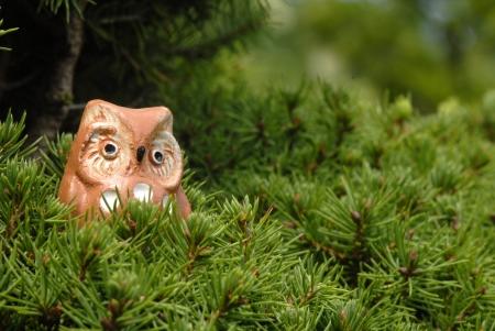 esoterismo: juguete búho en un árbol con copia espacio