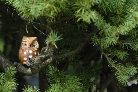 ceramic owl on the branch of a fir tree with copyspace photo