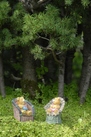 baby teddy bears sitting on the chair in the woods photo