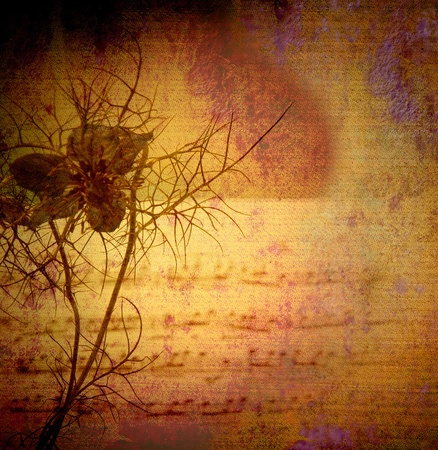 music score: vintage background canvas textured, flower and score Stock Photo