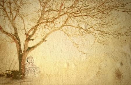iluminados: fondo Buda meditando bajo un árbol y espacio de la copia