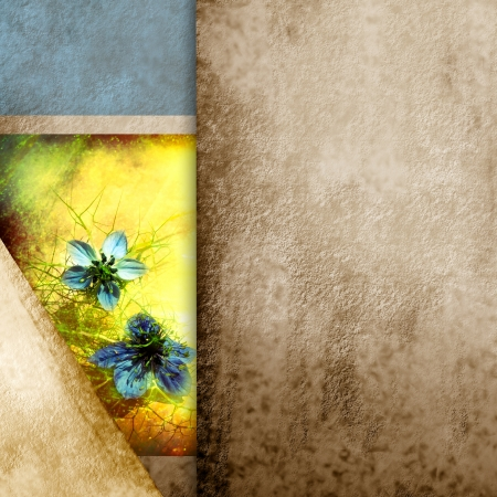 elegant geometric paper background and rare blue flowers photo