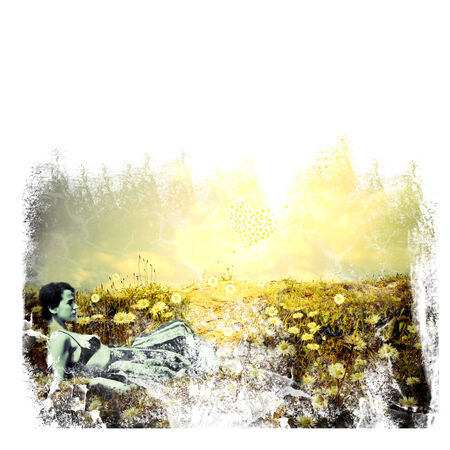 woman lying on meadow with daisies vintage grunge background photo