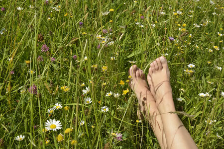 Feet of a young woman lying in a meadow with many colorful flowers in spring 免版税图像