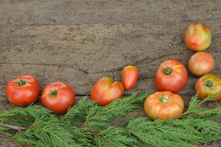 organically: Organically grown  tomatoes on wooden table with copy space Stock Photo