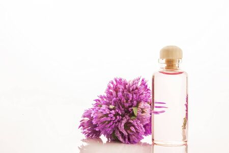 essence: Essence of red clover flowers in glass bottle isolated on white background Stock Photo