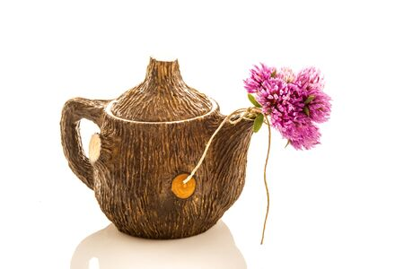 red clover: Teapot and red clover flowers  isolated on white background Stock Photo
