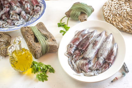 Fresh cuttlefish recently in the Cantabrian Sea, Spain, in an old tray and gear