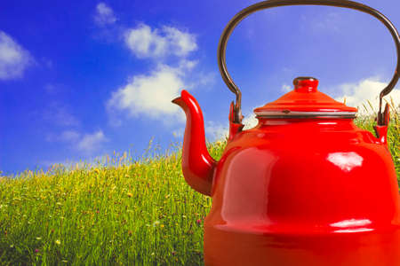 Old teapot, red kettle for boiling water and field of flowers with blue sky, herbal teas concept.