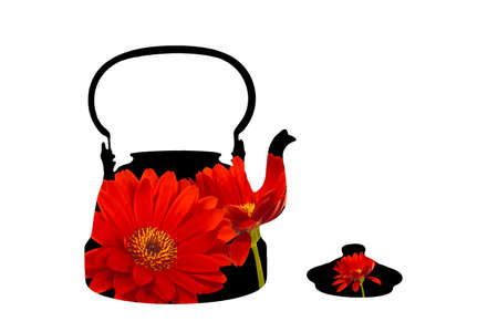 Isolated antique teapot. Silhouette of black teapot with red daisy flowers and with the lid removed.