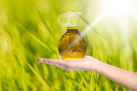 Extra virgin olive oil. Extra virgin olive oil in a glass oil jar on a woman's hand on a sunny meadow background. Concept of olive oil as a health and beauty product