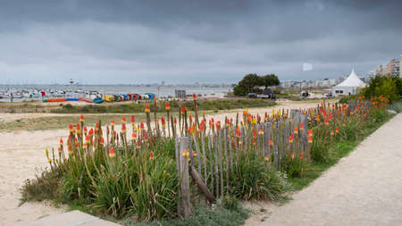 Beach in Brittany with flowers, boats, the sea and houses in the distance Banque d'images