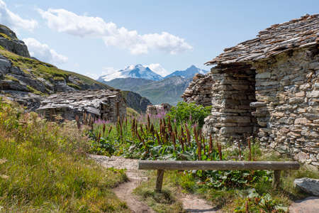 Mountain landscape with a ruin of an old house, flowers and glaciers