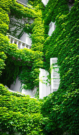 slovenia: green facade of an old house with white shutters and balcony