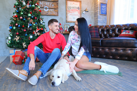 Lovers looking at each other, sitting and posing for camera, beside Labrador dog in studio on New Year background Christmas tree and festive decorations. Man dressed in red sweater, blue jeans and striped loafers, girl dressed in liight hoodie and denim s