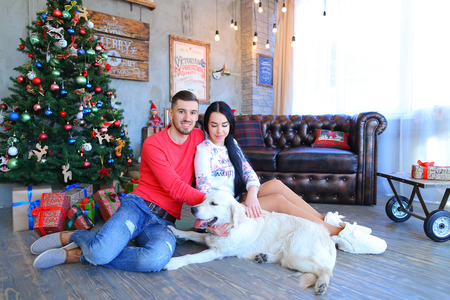 loafers: Loving couple sitting and cuddling, posing for camera, beside Labrador dog in studio on New Year background Christmas tree and festive decorations. Man dressed in red sweater, blue jeans and striped loafers, girl dressed in liight hoodie and denim skirt,
