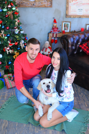 Bride and groom cuddling, smiling and looking the camera sitting and posing, beside Labrador dog in studio on New Year background Christmas tree and festive decorations. Man dressed in red sweater, blue jeans and striped loafers, girl dressed in liight ho