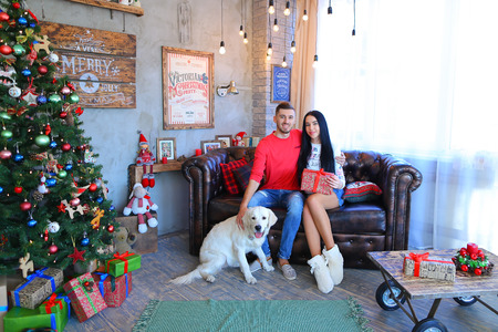 Lovely young lovers sitting on sofa together with dog Labrador in studio on New Year background Christmas tree and festive decorations. Man dressed in red sweater, blue jeans and striped loafers, girl dressed in liight hoodie and denim skirt, white slippe Stock Photo