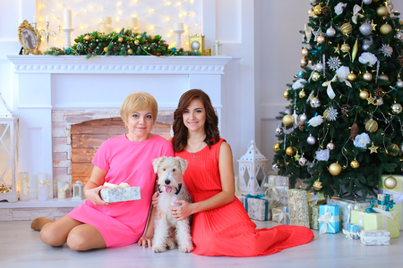 Daughter and mother smiling, sitting next to dog, terrier with black bow tie on floor in studio against white stone fireplace decorated with Christmas-tree decorations and Christmas tree beneath which lying Christmas gifts tied with ribbons. Woman holds b