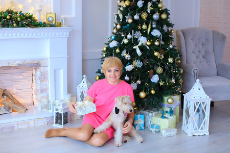stone fireplace: Beautiful cute female woman sitting on floor, holding dog, small terrier fluffy and holds gift box tied with ribbon on background of white stone fireplace and lighted Christmas tree beneath which lying in cozy Christmas gifts studio. Woman dressed in pink
