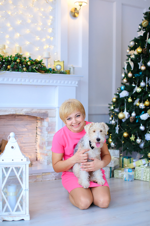 Beautiful cute female woman sitting on floor, holding dog, small furry terrier on background of white stone fireplace and lighted Christmas tree beneath which lying in cozy Christmas gifts studio. Woman dressed in pink dress of medium length. Concept of e