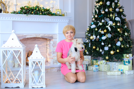stone fireplace: Beautiful cute female woman sitting on floor, holding dog, small furry terrier on background of white stone fireplace and lighted Christmas tree beneath which lying in cozy Christmas gifts studio. Woman dressed in pink dress of medium length. Concept of e