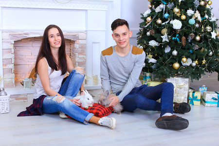 Girl and guy smiling and pose for camera with bunny  in New Year studio on background of Christmas tree and gifts. Girl dressed in a white shirt, blue ripped jeans and white sneakers, guy dressed in gray jacket, dark blue jeans and black loafers. Concept  Stock Photo