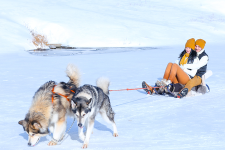 mushing: Girl and guy european appearance hugs in winter white snow. Two dogs are playing outside. Young couple man and woman love each other, show their sincere feelings. Concept of happiness, happy family life and love. Stock Photo