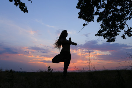 Female with beautiful figure takes yoga postures, gymnastics and ballet spends stretching and meditating, posing for advertising shoot fitness studio, healthy energy drink, dancing belly dancing among wide field on background of pink sunset and beautiful  Stock Photo