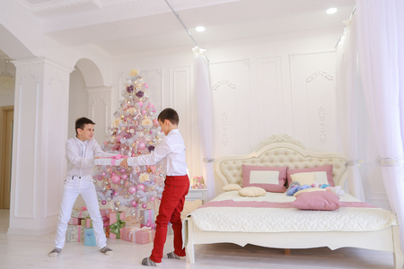 Cheerful and active boys, two brothers take each others gift box, fights in game form for gift, smile and laugh in beautiful bedroom with Christmas tree. Male children with brown hair and short hair of European appearance are dressed in white shirts and white and red jeans. Concept of childrens games and fun on New Years Eve, festive mood and Christmas gifts under New Year tree, advertising childrens clothing for boys.