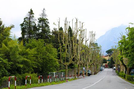 Rural picturesque street with trees, cars and blue mountain in background. Concept of southern resort.