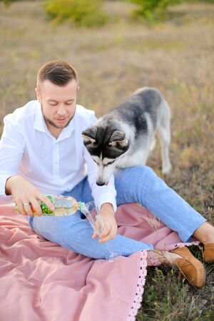 Young male person pouring glass and sitting on pink plaid near malamute outside. Concept of picnic on nature and pet dog. Banco de Imagens