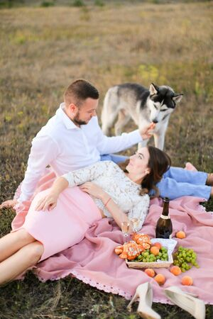 Young woman lying on man knees and pink plaid in steppe near husky and fruits. oncept of picnic and relationship, romantic love.